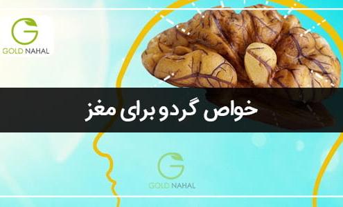 خواص گردو برای مغز
