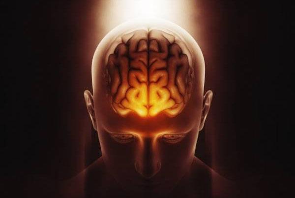 تقویت مغز با گردو