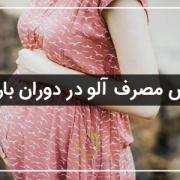 خواص مصرف الو در بارداری