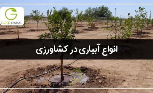 انواع آبیاری درختان